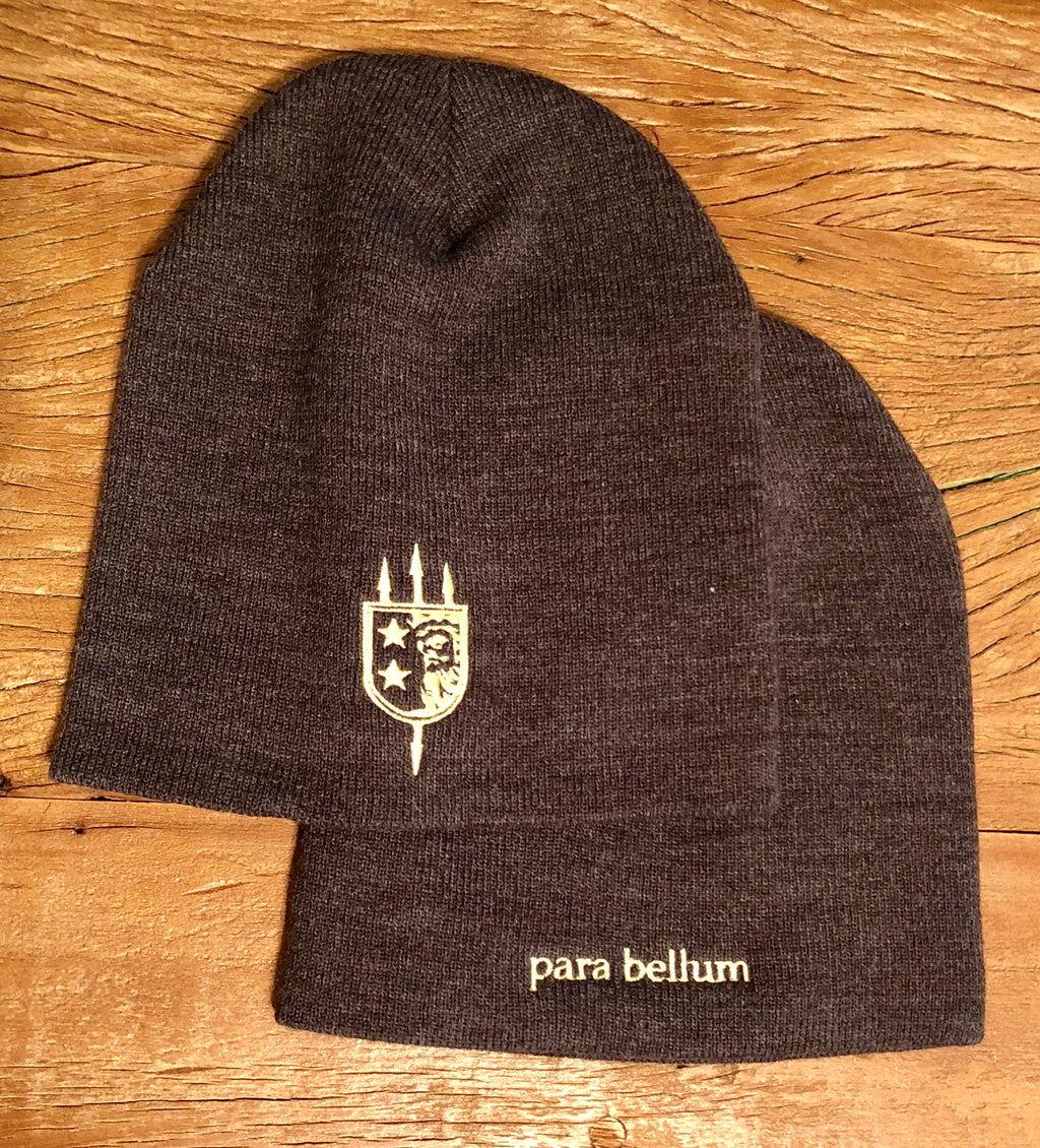 V+B LTD ALPHA GREY BEANIE