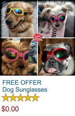 FREE OFFER - Dog Cool Water Prof Sunglasses
