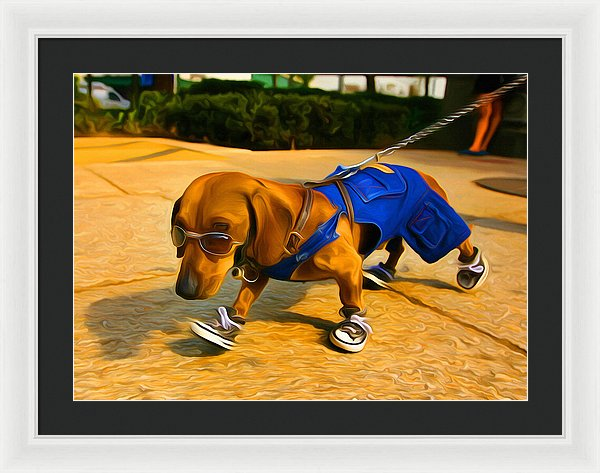 Dog Dude - Framed Print - Design Forms Of Art