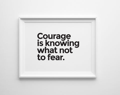 Courage is Knowing What Not to Fear Print