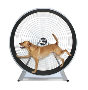 GoPet Dog Exercise Wheel for Medium to Large Dogs <150 lbs