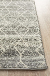 Summon Remy Silver Transitional Runner Rug