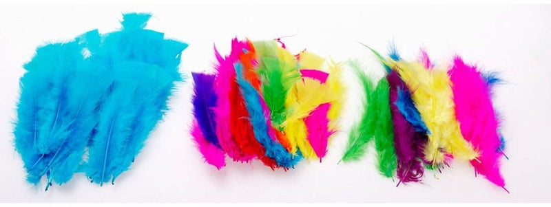 Feathers 0324190 Large 30gm Assorted