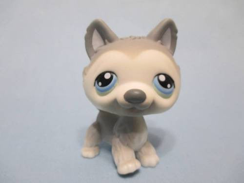 Littlest Pet Shop 69 Gray White Husky Puppy Dog Authentic