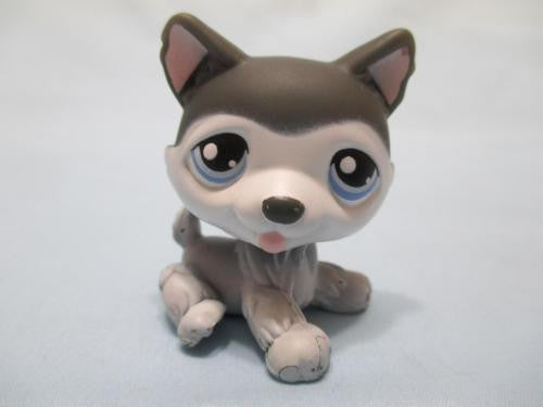Littlest Pet Shop Dog Husky Gray Blue Eyes Puppy 210 Authentic Lps
