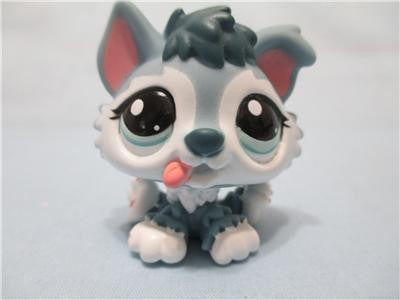 Littlest Pet Shop Lps Tagged Pets Page 2 Lpsqueencom