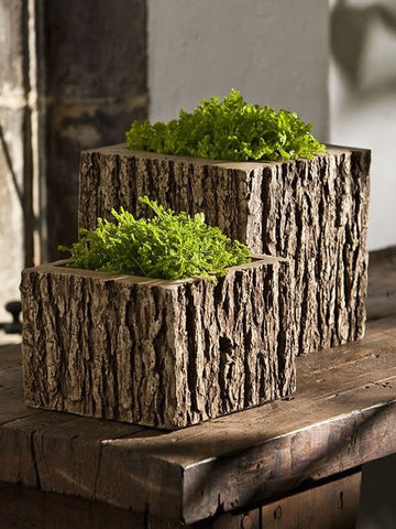 Campania International  Mini Low Reef Square Planter