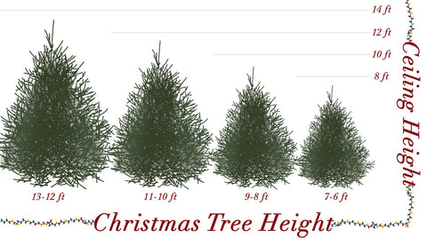 Christmas Tree Size Chart