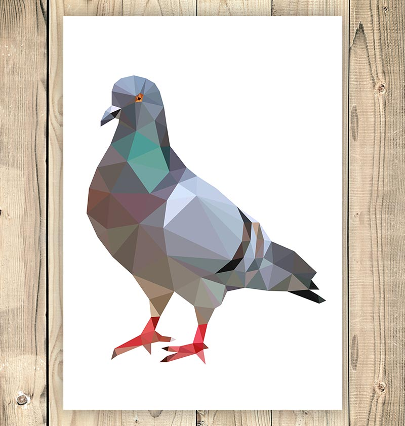 Pigeon - Bird illustration - Geometric style