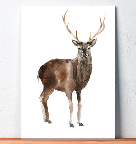 deer animal art watercolor