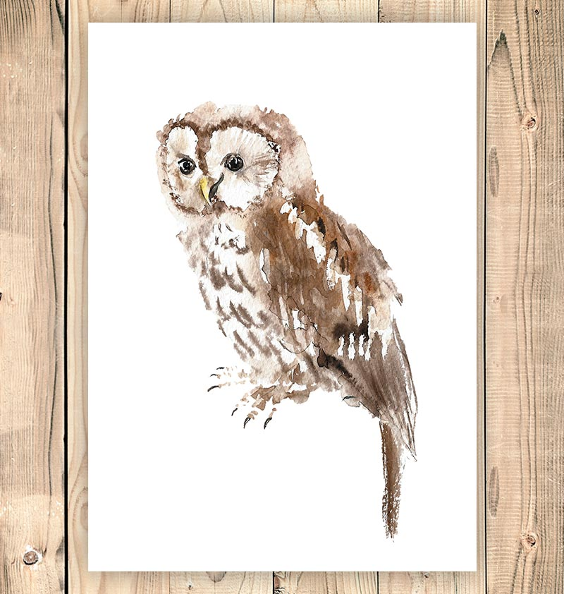 Bird wall art - Watercolor owl