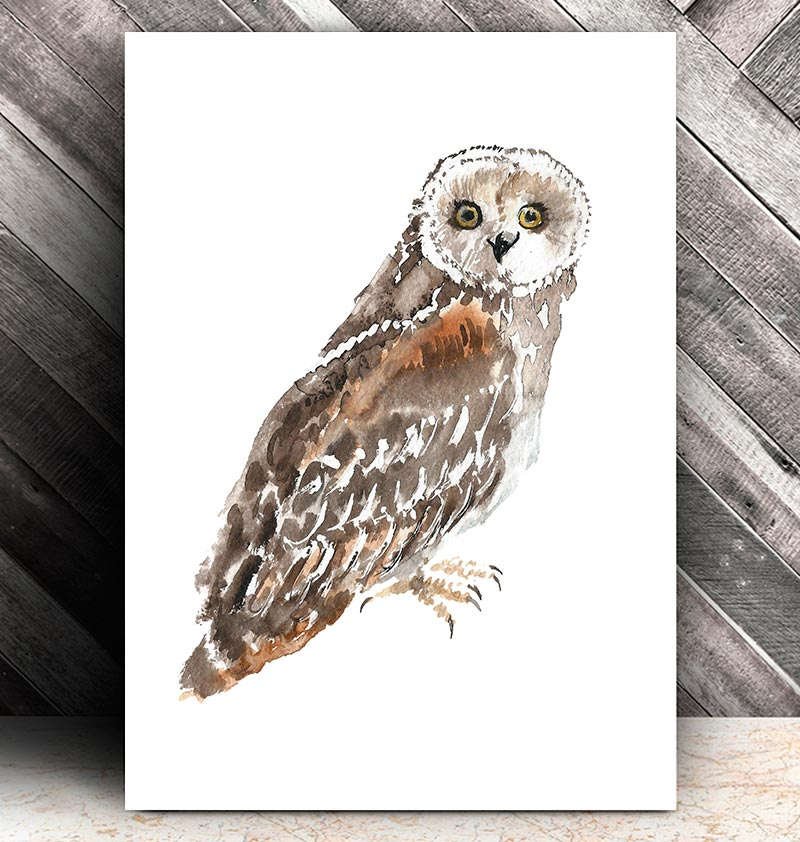 Owl II - Bird art - Watercolor