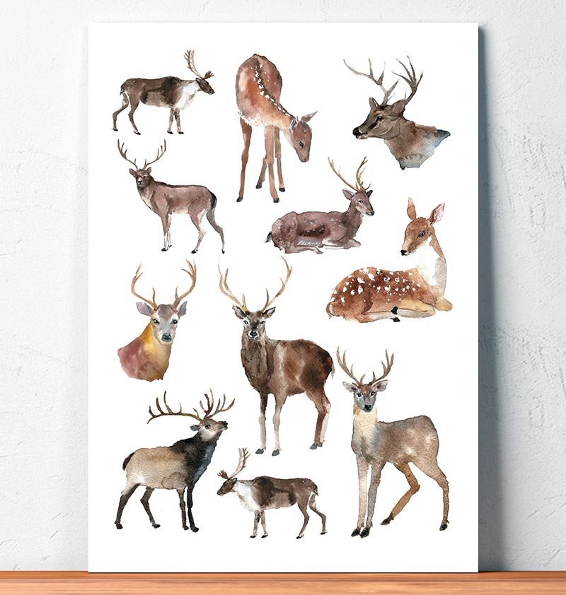 deer collage watercolor animal art