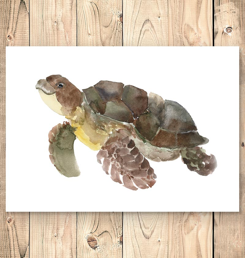 Turtle print - Marine animal art - Watercolor