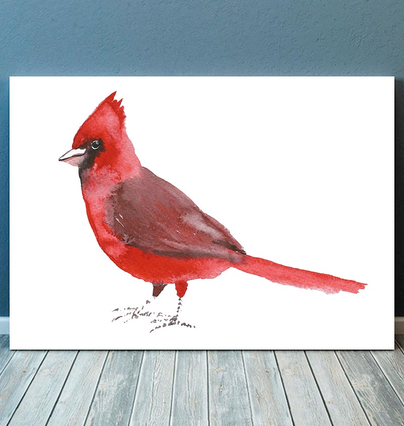 Cardinal bird illustration - Watercolor art