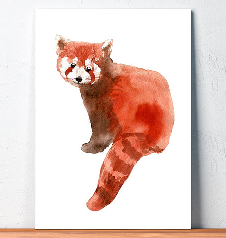 sitting red panda watercolor animal art