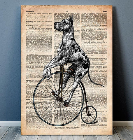 cycling dalmatian dictionary animal art
