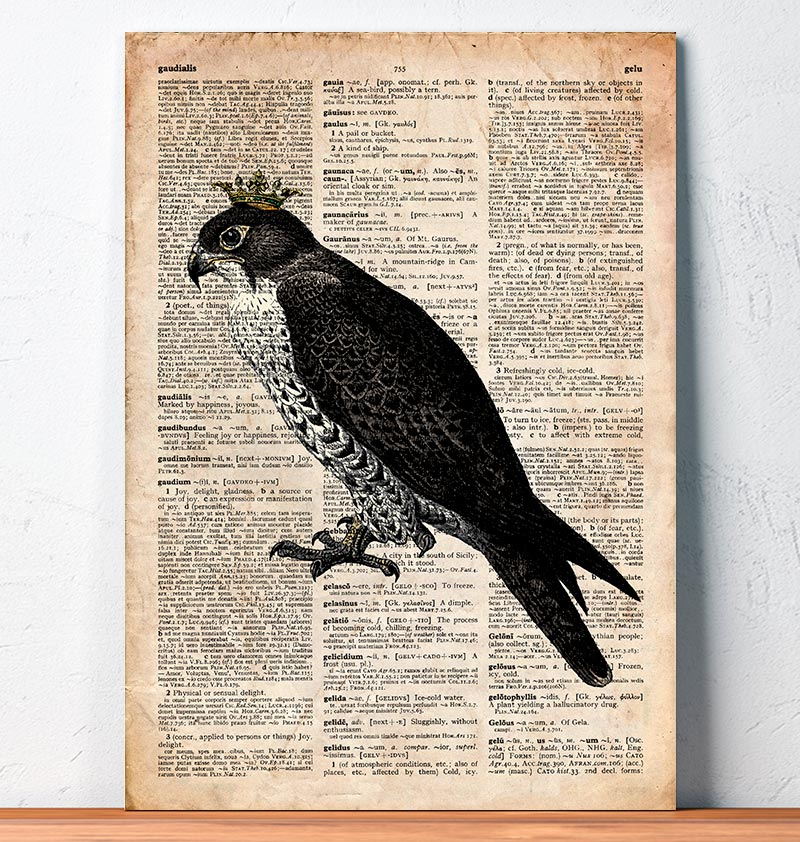 Falcon King - Bird print - Dictionary art
