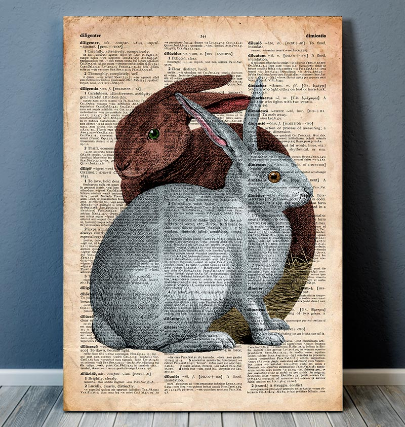 two rabbits on a dictionary page animal poster