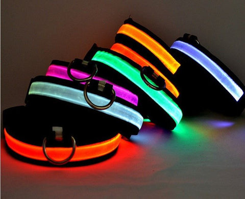 Multicolor LED Pet Collar