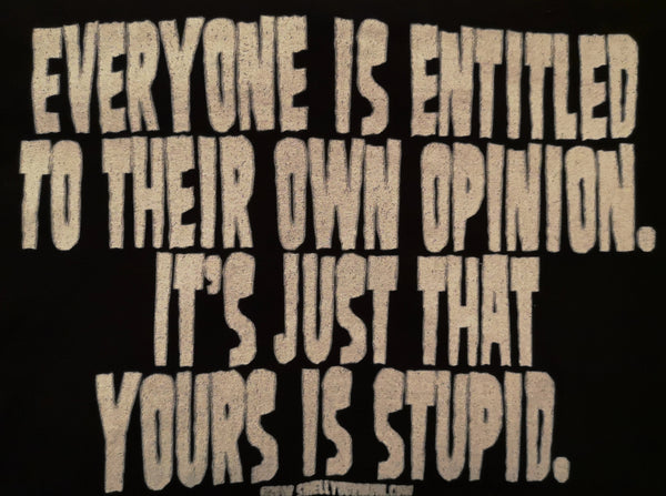 Everyone is Entitled to their own Opinion it's just yours is Stupid - XL - Ladies Fit T-Shirt
