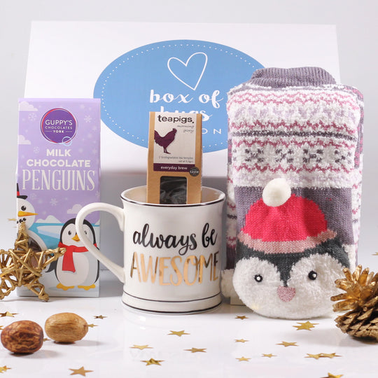 Cosy Penguin Hug Gift Box