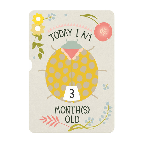 Milestone Baby Age Turn Wheel Card