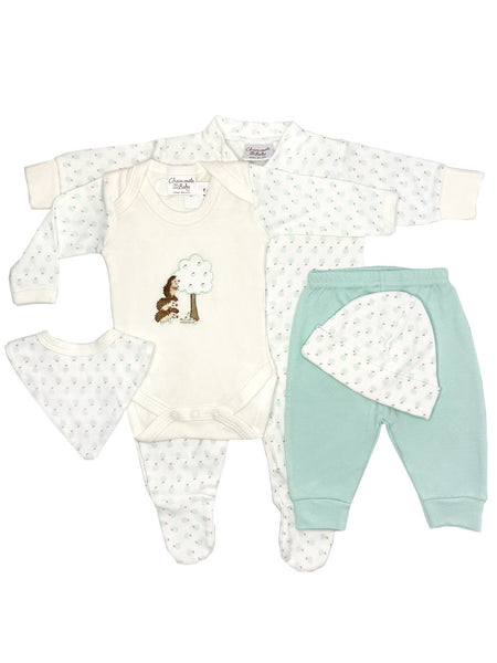 Apple Hedgehogs Gift Set: Sleepsuit, Bodysuit, Trousers, Bib & Hat (0-3 months)