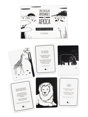 High Contrast Baby Flash Cards - African Animals