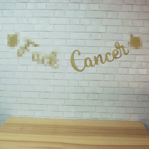 F**k Cancer Banner on Pinterest