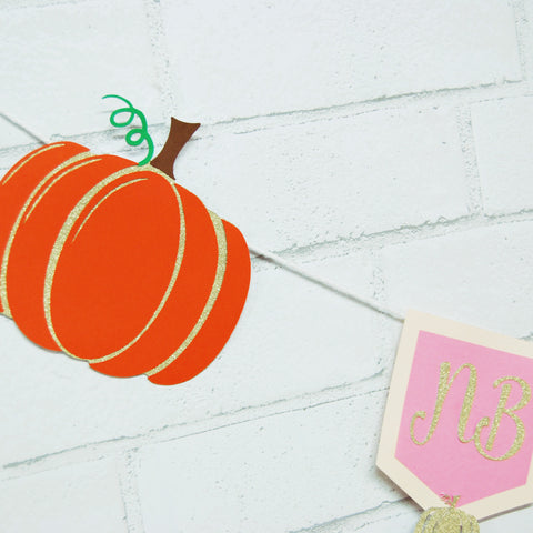 Little Pumpkin Monthly Photo Banner