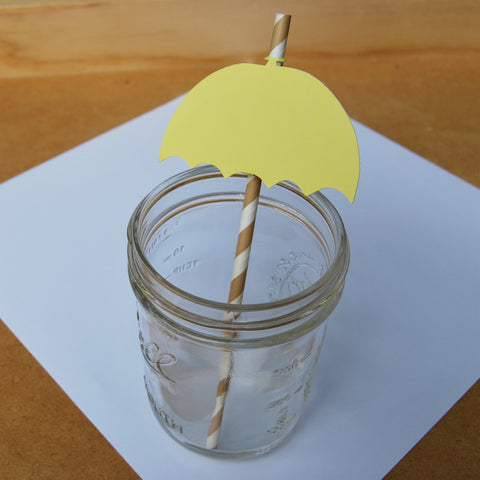 Umbrella Straw Toppers