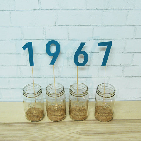Birth Year Centerpiece
