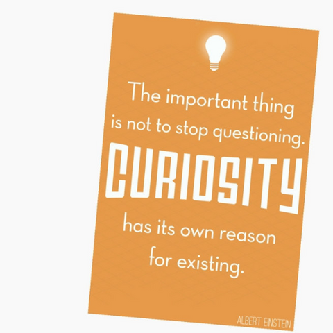 """Curiosity"" Print on Pinterest"