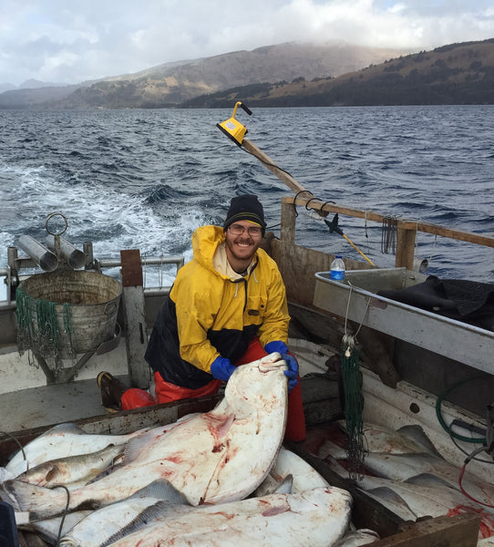 Cleaning Halibut Kodiak Longlining