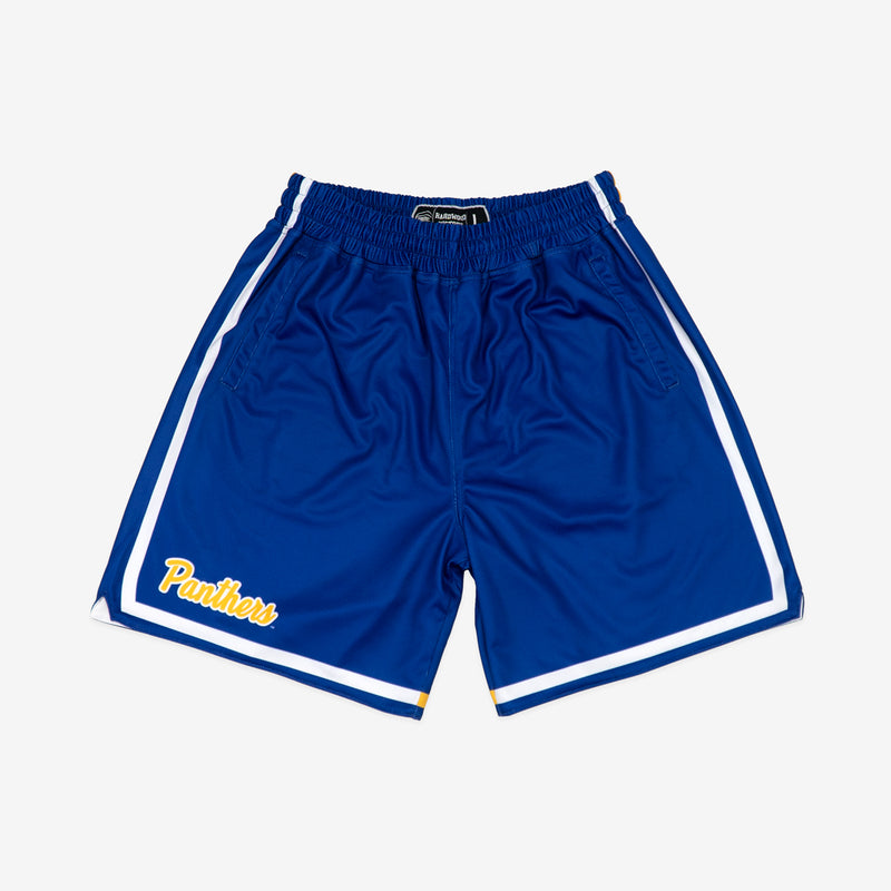 Pittsburgh Panthers 1987-1988