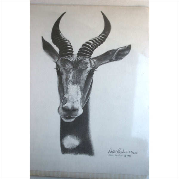 1990 Vintage Art Black and White Pencil Drawing Incredible Detail Lithograph Numbered 59/600  Artist Signed Patti Parker Antelope Gazelle