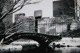 NEW YORK CiTY Central Park Times Square Vintage Black and White Snow Covered Bridge Snowy Frozen Winter Scene USA