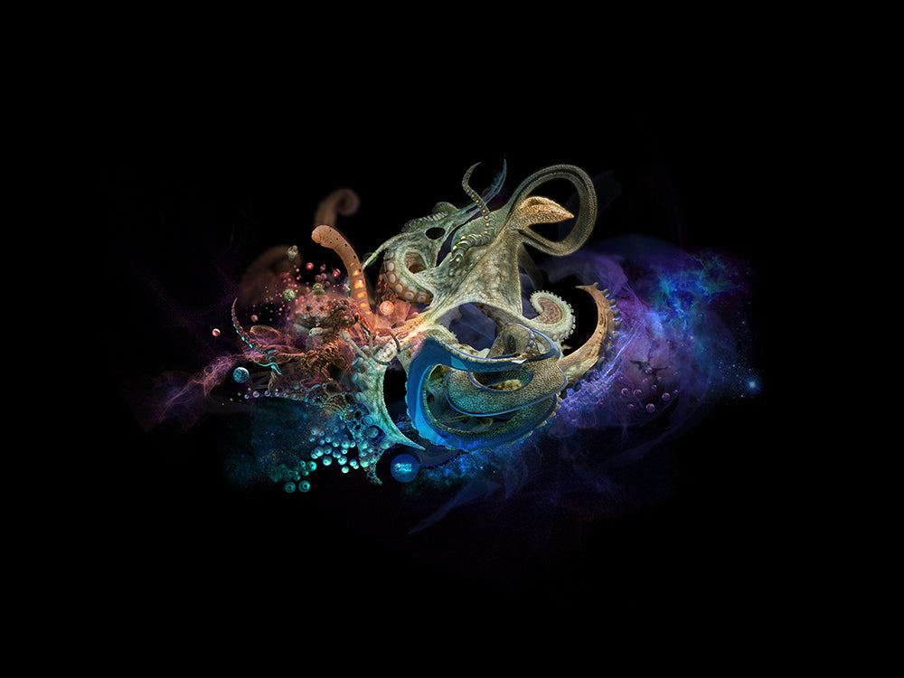 Octopus Abstract