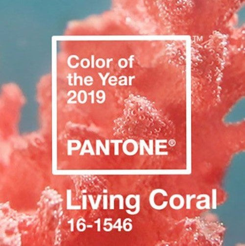 2019 Patone Color of the Year