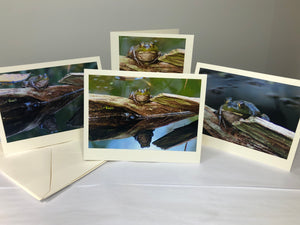 NEW! The Reflective Frog Photo Note Cards