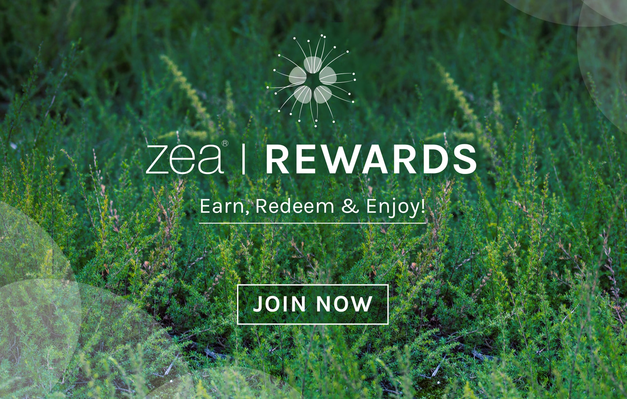https://www.zearelief.com/account/register