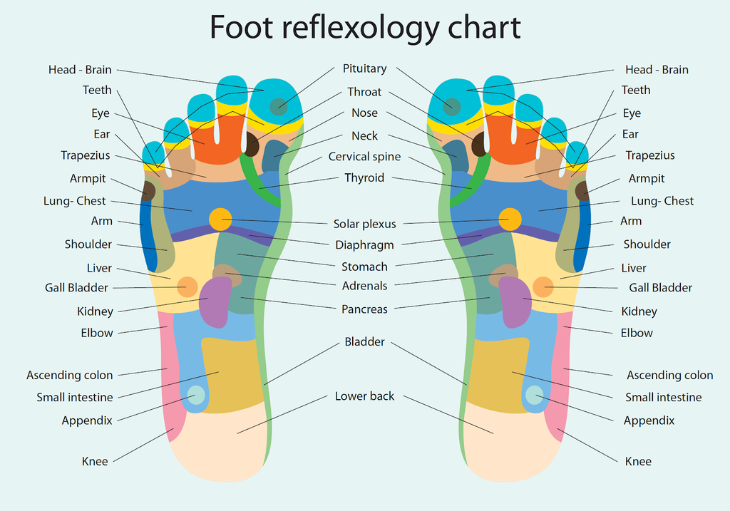 Foot Reflexology and the Reflex Points