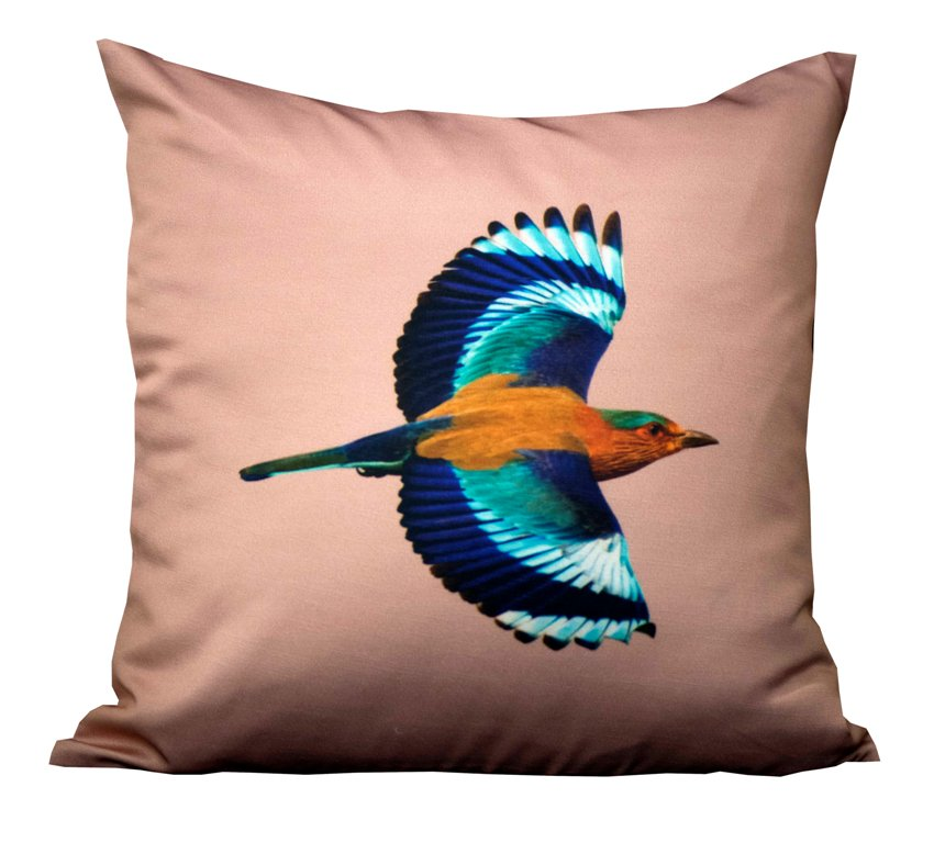 Indian roller in flight cushion