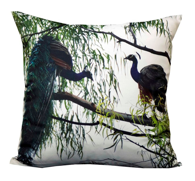 Peacock pair cushion cover