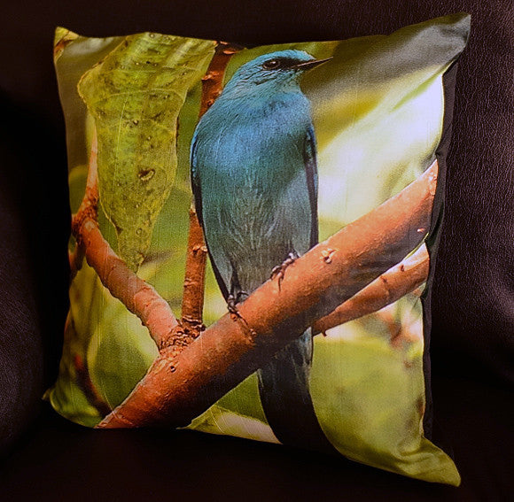 Verditer Flycatcher Cushion covers (16 in.-40 cm. or 18 in.-45 cm. size cushions)