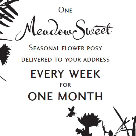 One Month of MeadowSweet posies