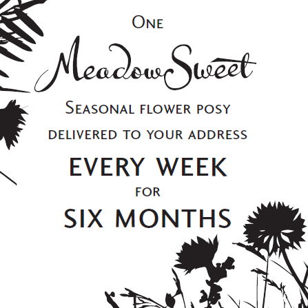 Six Months of MeadowSweet posies