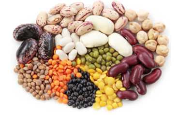Vegan & Vegetarian Sources of Protein