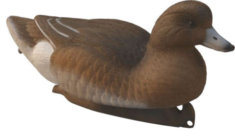 Flambeau Eurasian Wigeon Duck Decoy Set of 6